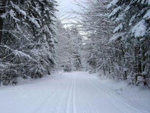 К чему снится белый снег?
