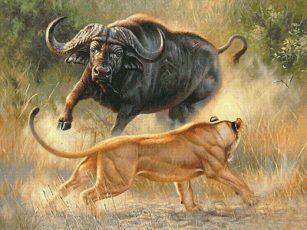 Телец и Лев Совместимость знаков Зодиака | Советник и покровитель