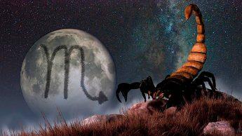 Телец и Скорпион Совместимость знаков Зодиака | Противоположности притягиваются
