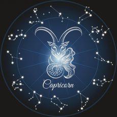 Близнецы и Козерог Совместимость знаков Зодиака | Кролик и удав