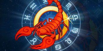 Близнецы и Скорпион Совместимость знаков Зодиака | Удав и кролик