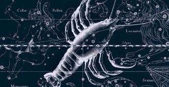 Рак и Рак Совместимость знаков Зодиака | Я и мое зеркало