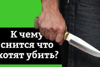 сонник хотят убить